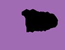 PsyMenta  Logo
